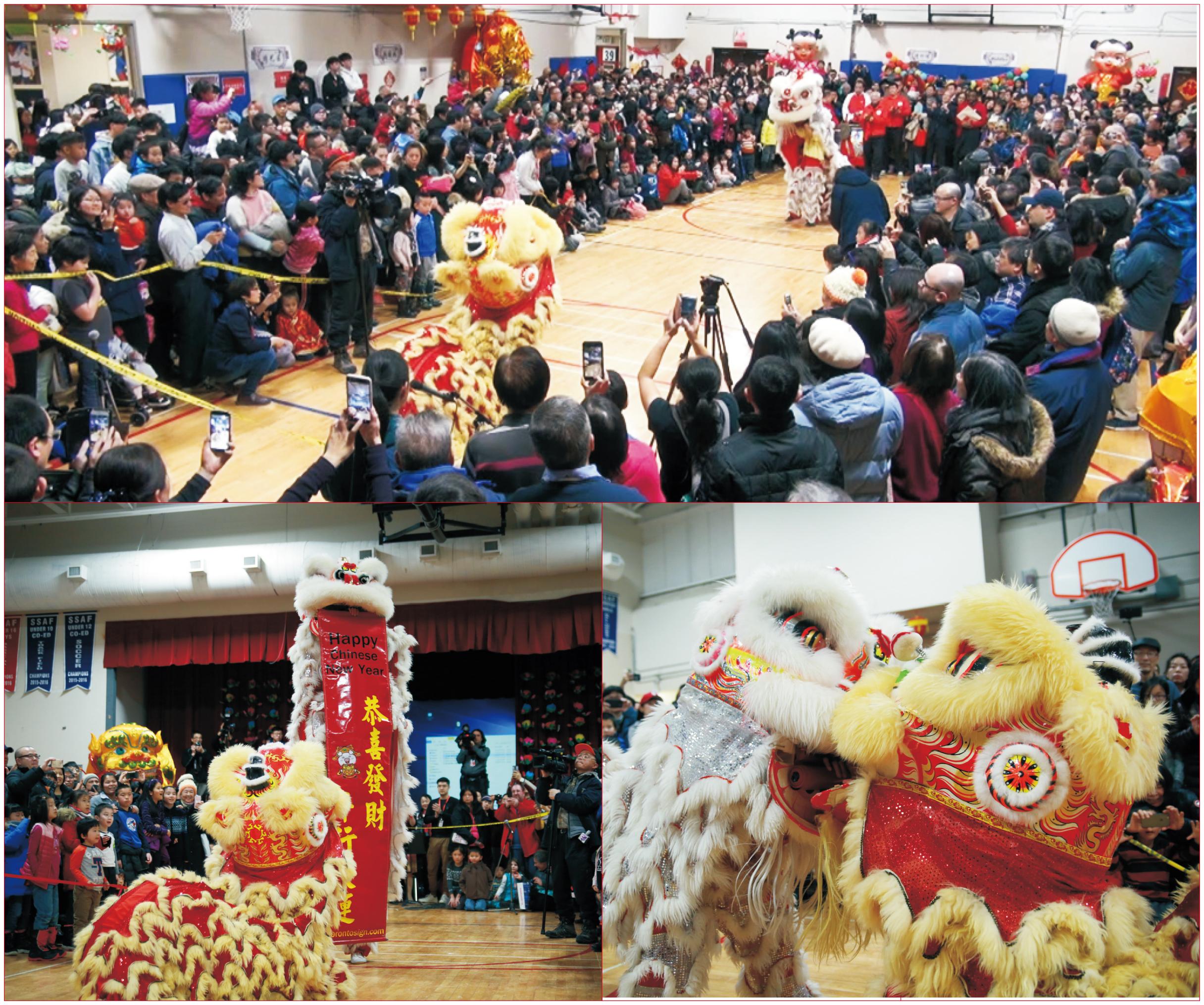 3000 Audiences Enjoyed The Light-up Celebration of 2019 Toronto Qinhuai  Lantern Festival on Family Day